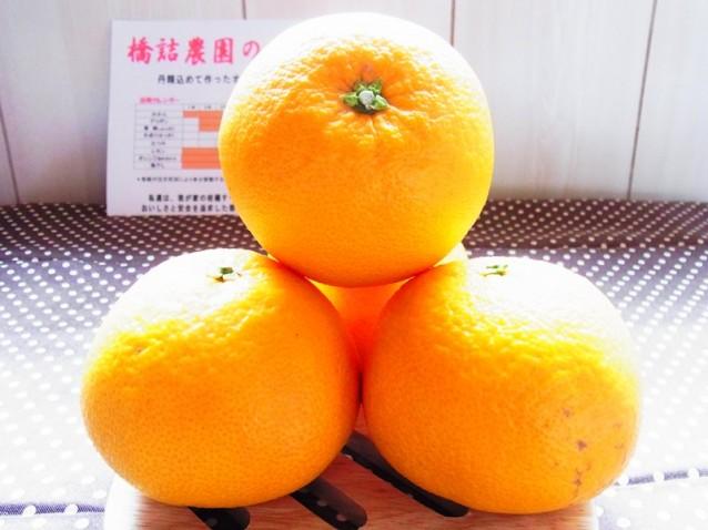 春峰(しゅんぽう)