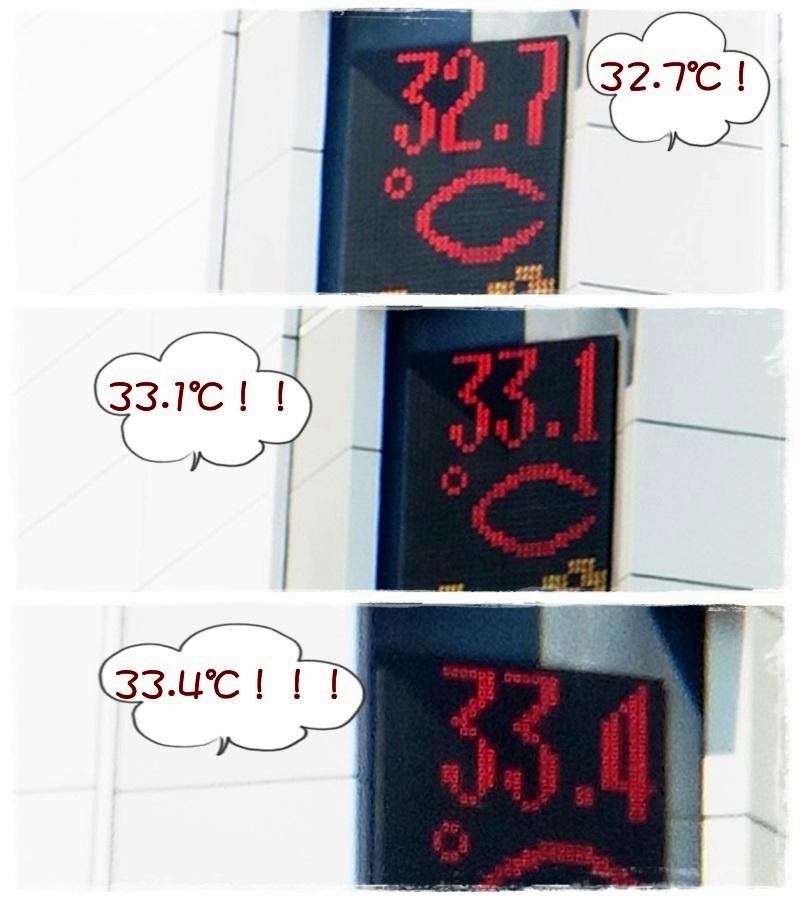 札幌 猛暑