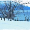 千歳・支笏湖 氷濤まつり